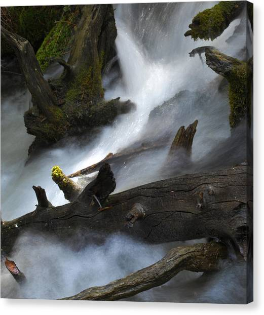 Downstream Canvas Print by Matthew Fredricey