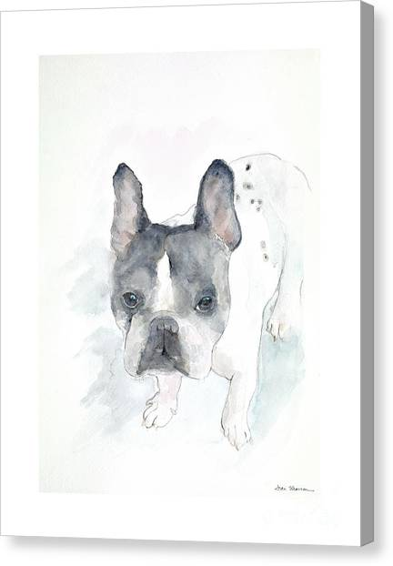 French Bull Dogs Canvas Print - Dozer by Joan Sharron