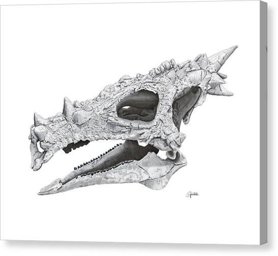 Dracorex Hogwartsia Skull Canvas Print