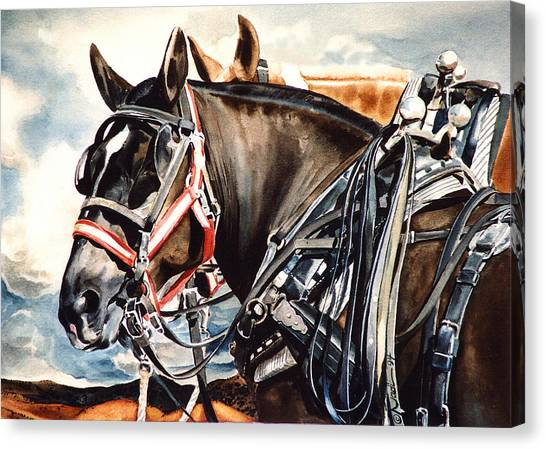 Draft Horses Canvas Print - Draft Mules by Nadi Spencer