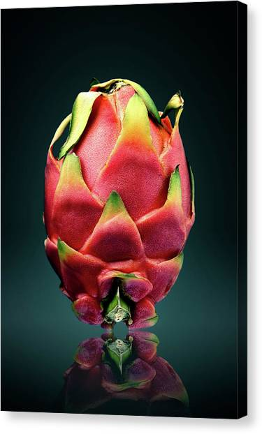 Dragons Canvas Print - Dragon Fruit Or Pitaya  by Johan Swanepoel