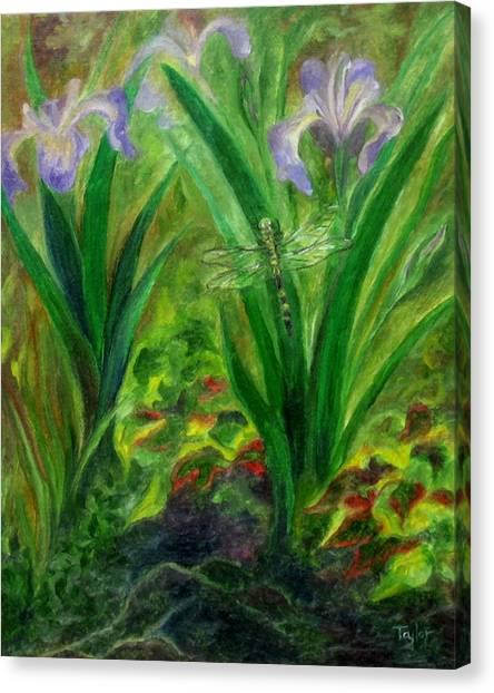 Dragonfly Medicine Canvas Print