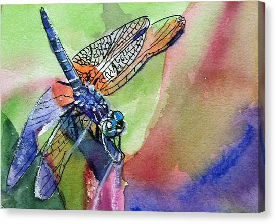 Dragonfly Of Many Colors Canvas Print