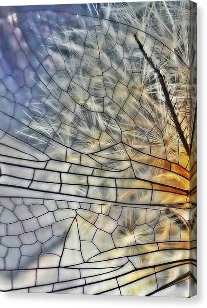 Dragonfly Wing Canvas Print