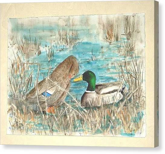 Drake And Hen Canvas Print by Diane Ziemski