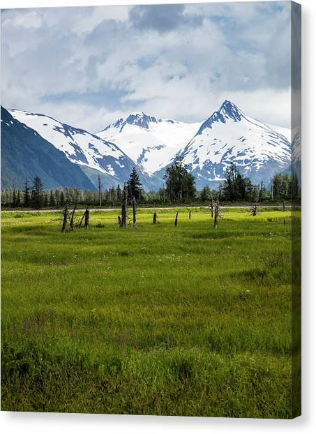 Dramatic Mountains Over A Meadow Canvas Print