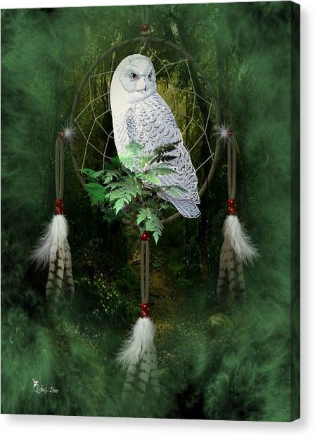 Dream Catcher White Owl Canvas Print