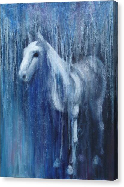 Dream Horse Canvas Print