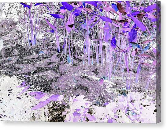 Dream-like Canvas Print