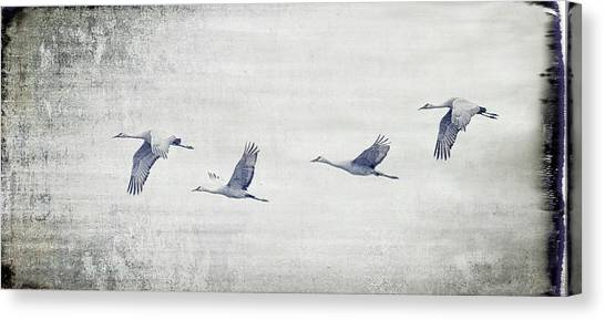 Dream Sequence Canvas Print