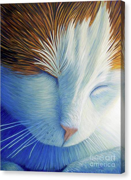 Sleep Canvas Print - Dream Within A Dream by Brian  Commerford
