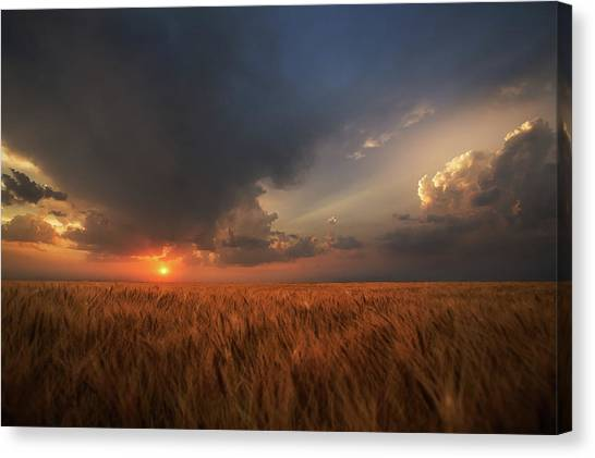 Wind Farms Canvas Print - Dreamcatcher by Thomas Zimmerman