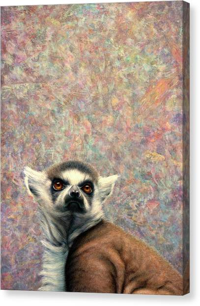 Ring-tailed Lemur Canvas Print - Dreamer by James W Johnson