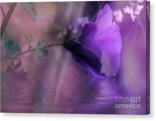 Dreaming In Purple Canvas Print