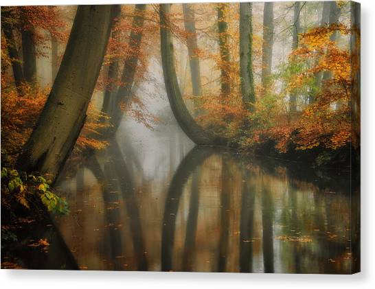 Martin Canvas Print - Dreaming by Martin Podt