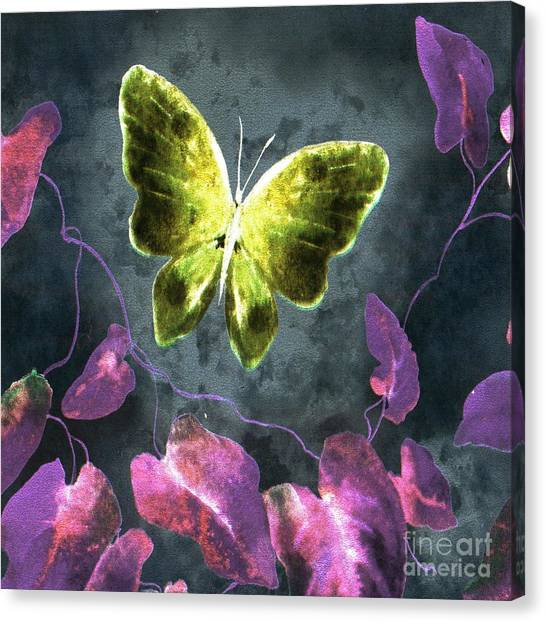 Dreams Of Butterflies Canvas Print