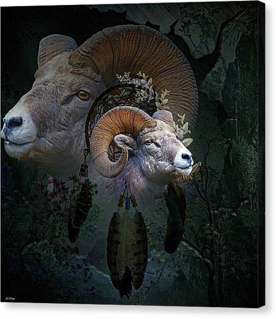 Dream Catcher Gallery Canvas Print - Dreams Of The Ram by G Berry
