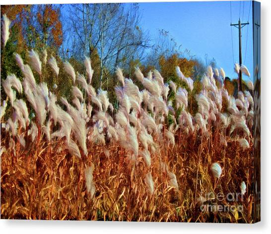 Minnesota Wild Canvas Print - Dreamy Autumn Breeze by Isaiah Moore