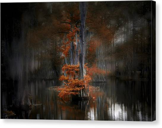 Dreamy Autumn Canvas Print by Cecil Fuselier