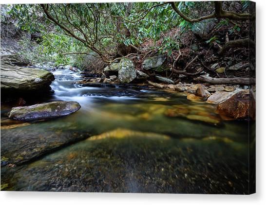 Dreamy Creek Canvas Print