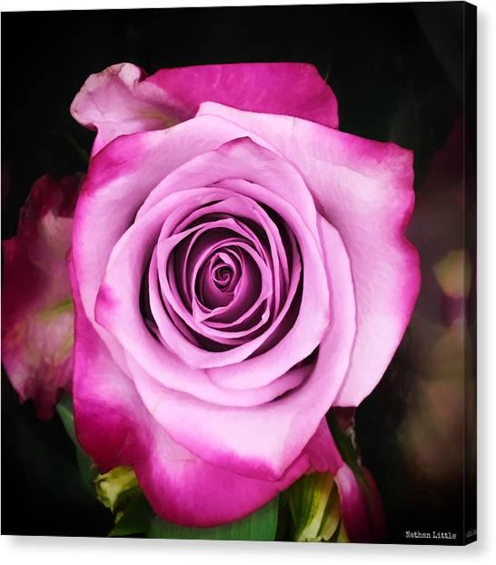 Dreamy Pink Canvas Print