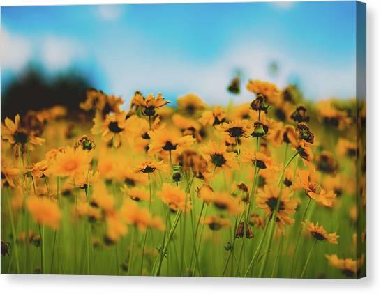 Dreamy Summertime Canvas Print