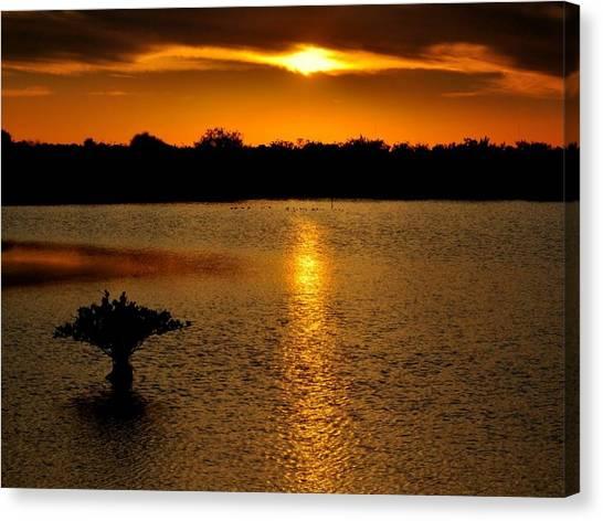 Dreamy Sunset Canvas Print by Jennifer A Garcia