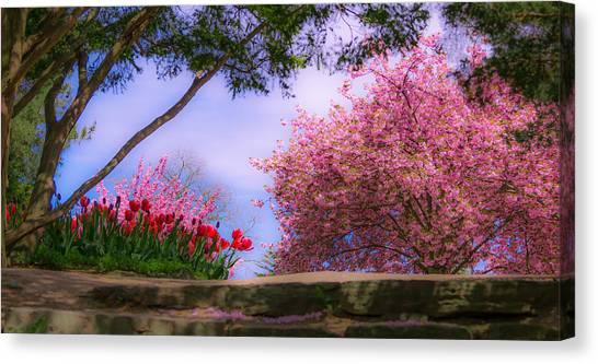 Dreamy Tulip Respite Canvas Print