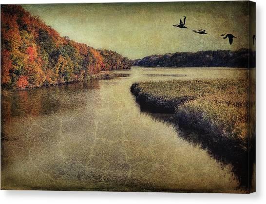 Dreary Autumn Canvas Print
