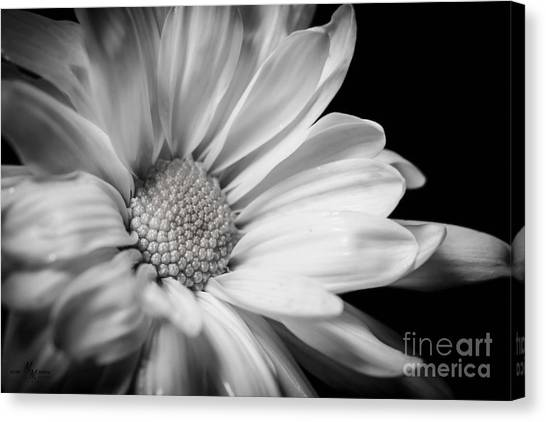Dressed In Black And White Canvas Print