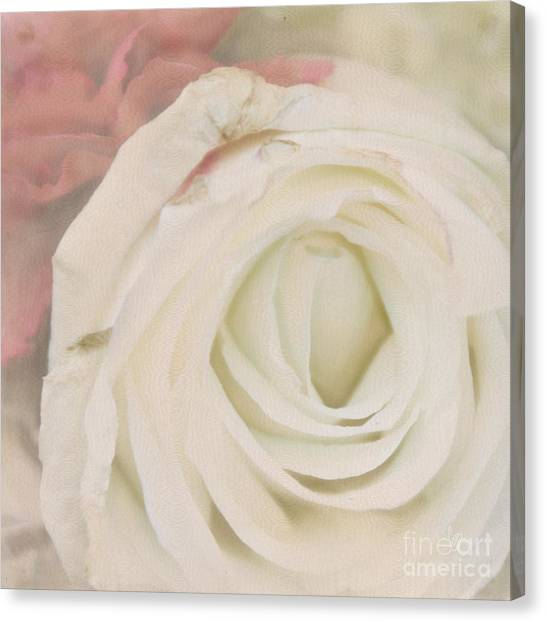 Dressed In White Satin Canvas Print