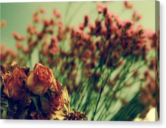 Close-up Canvas Print - Dried Roses by Kendall Tabor