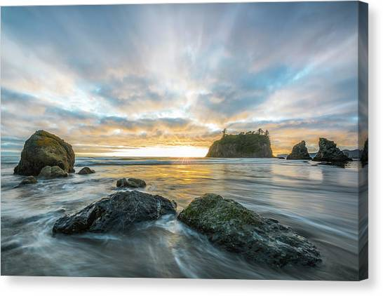 Olympic National Park Canvas Print - Drifting Into The Silence by Jon Glaser