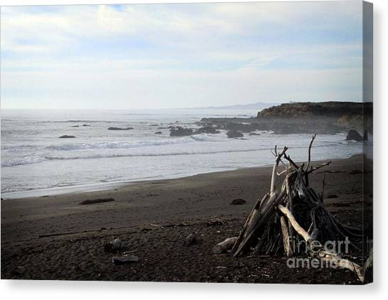 Beach Cliffs Canvas Print - Driftwood And Moonstone Beach by Linda Woods