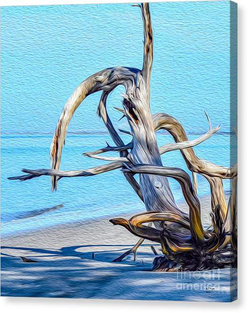 Driftwood On Jekyll Canvas Print