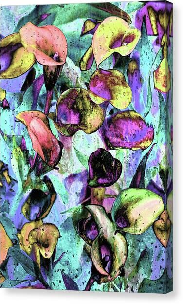 Nevada Canvas Print - Drops Of Jupiter by Az Jackson