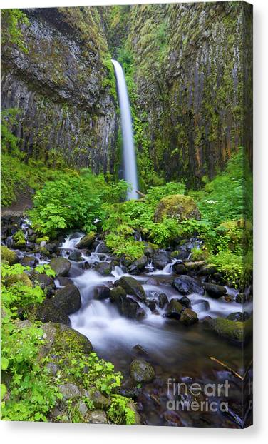 Dry Creek Falls Canvas Print