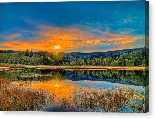 Dry Lagoon Spring Morning Canvas Print