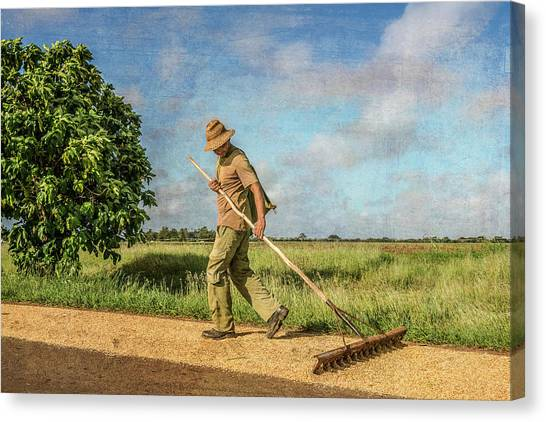Canvas Print featuring the photograph Drying Rice by Lou Novick