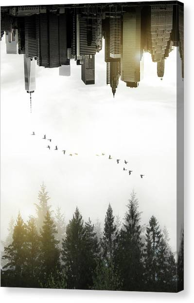 Foggy Forests Canvas Print - Duality by Nicklas Gustafsson