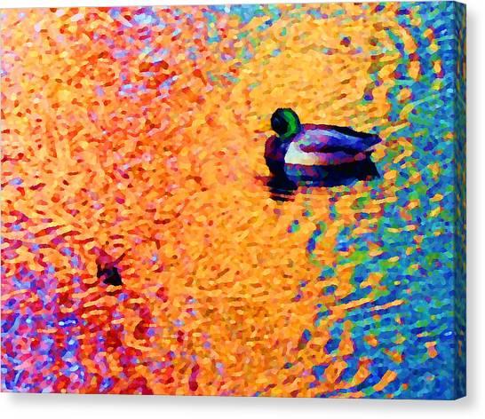 Duck A L'orange Canvas Print