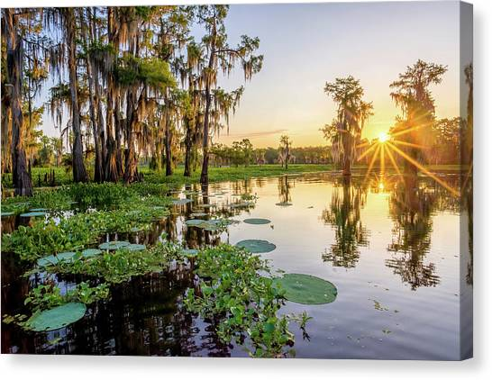 Atchafalaya Basin Canvas Print - Duck Lake Sunrise by Andy Crawford