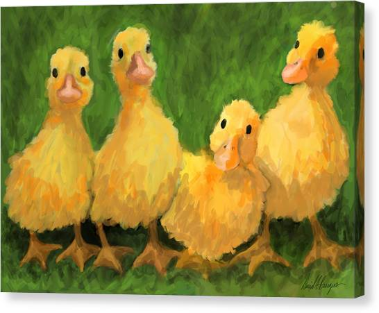 Fuzzy Duckies Canvas Print by David Burgess