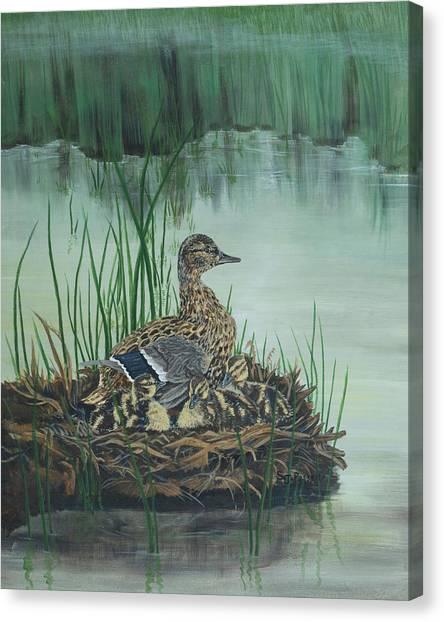 Ducks In Lifting Fog Canvas Print