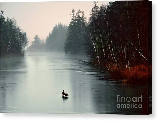 Ducks On A Frozen Pond Canvas Print