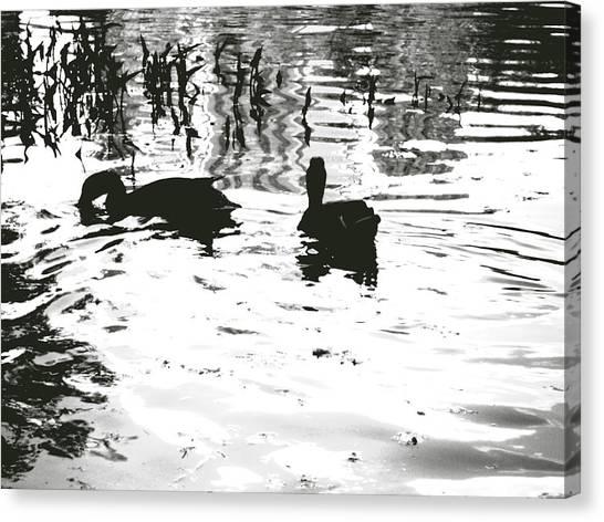 Ducks In Piedmont Park Canvas Print