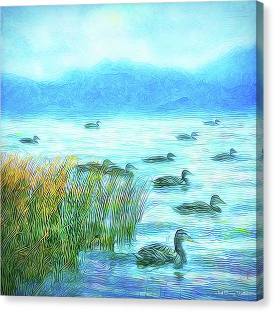 Ducks On Misty Morn - Lake In Boulder County Colorado Canvas Print