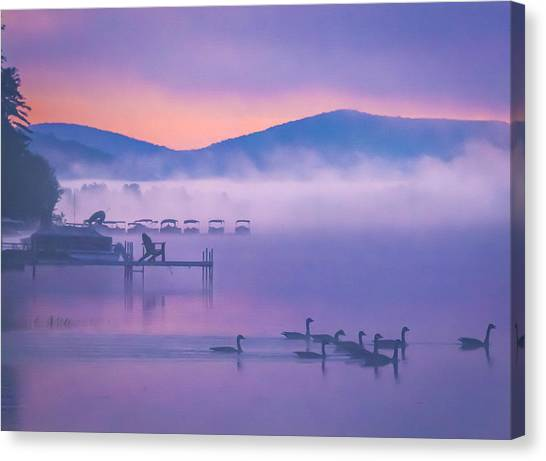 Ducks Under Fog Canvas Print