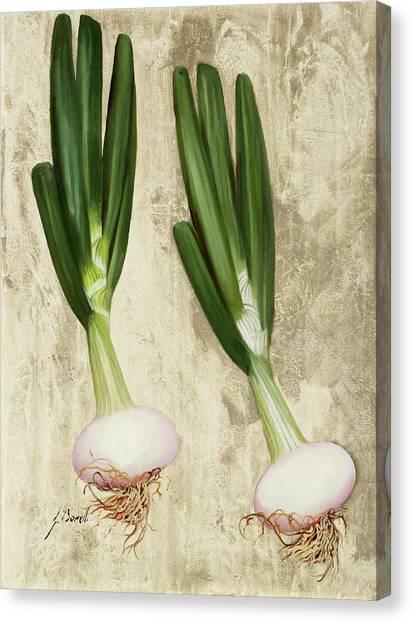 Onions Canvas Print - Due Cipollotti by Guido Borelli