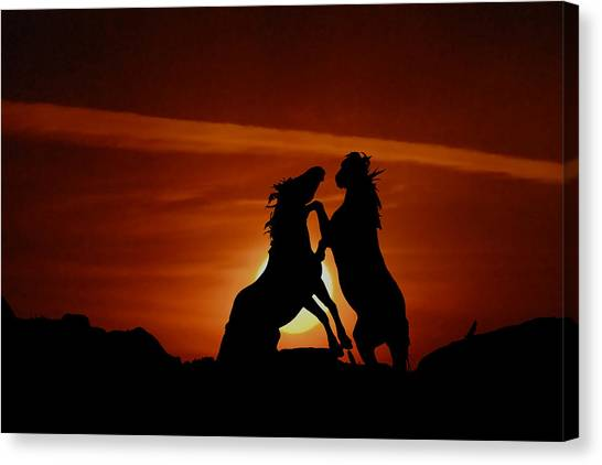 Duel At Sundown Canvas Print